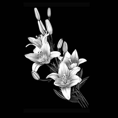 Цветок 106