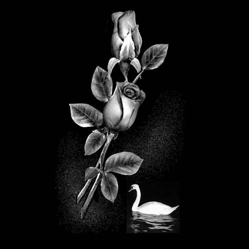 Цветок 107