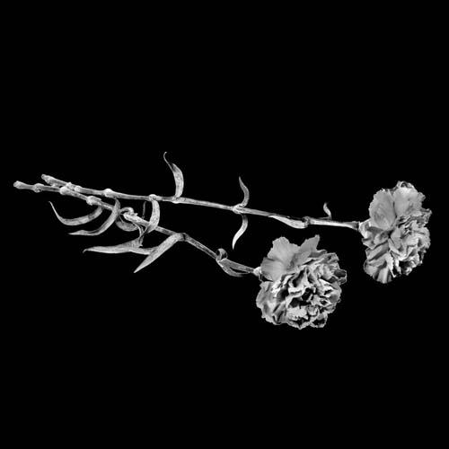 Цветок 11