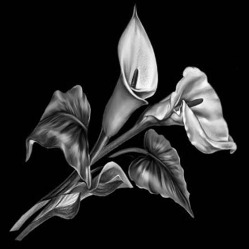 Цветок 118