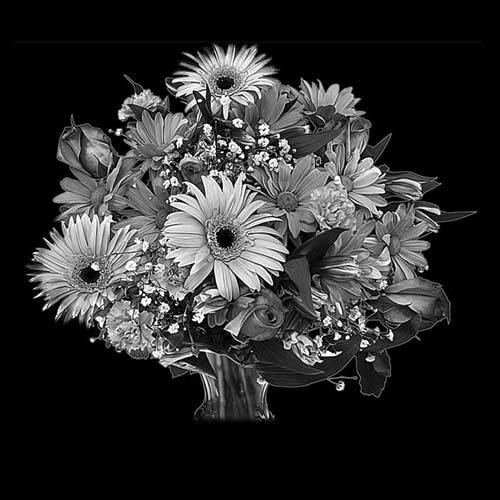 Цветок 125