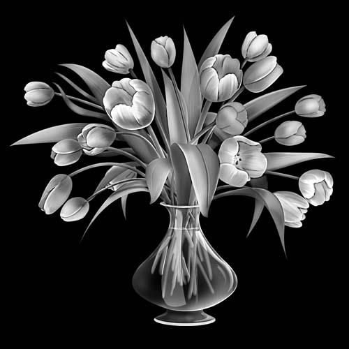 Цветок 144
