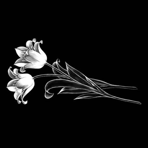 Цветок 33