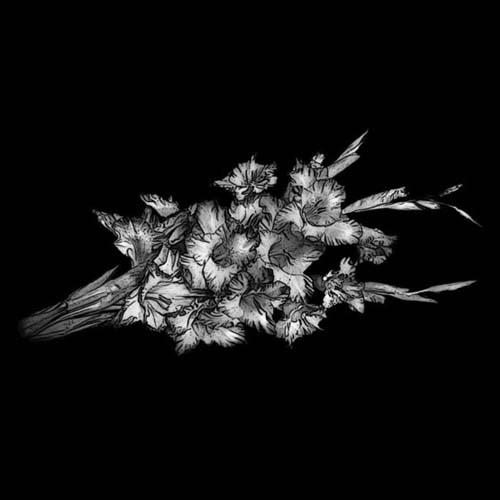 Цветок 39
