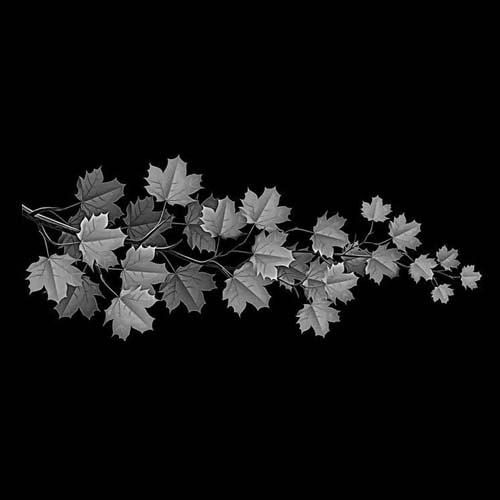 Цветок 40