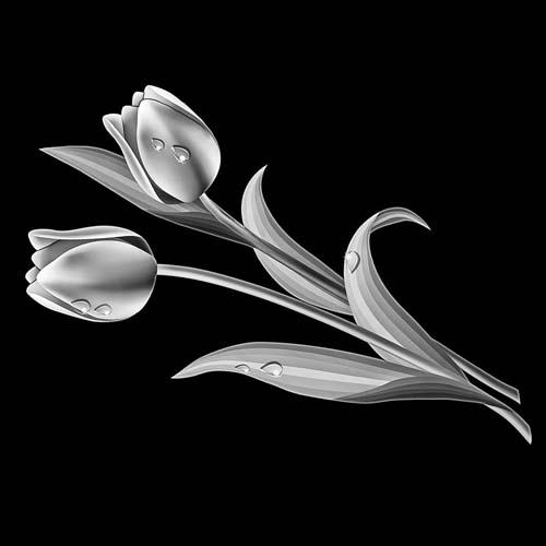 Цветок 43