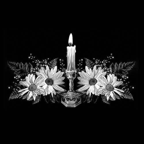 Цветок 51