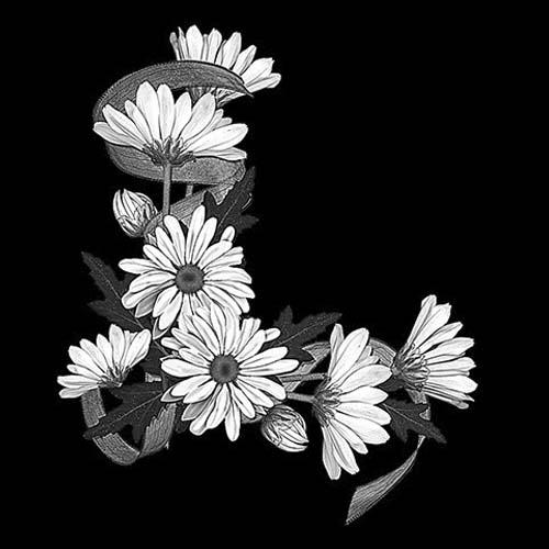 Цветок 79