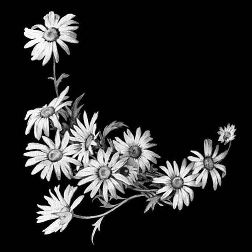 Цветок 83