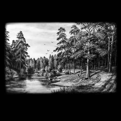 Фон природы 38